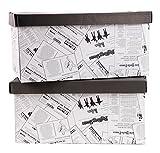 Aufbewahrungs-Box Aufbewahrungsbox aus Pappe Im 2er Set in verschiedenen Farben (47 x 31 x 22 cm, 2er Set Wallpaper)