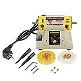 220V 350W Amoladora Eléctrica Máquina Pulidora para Joyería Dental Torno Motor