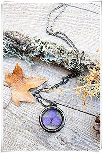 das pendant, hydrangea halskette, terrarium anhänger, echte blumen halskette, lila blume, glas medaillon, botanische schmuck (Muster Hydrangea)