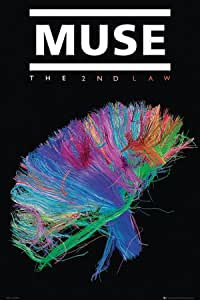 Muse Poster The Second Law (61cm x 91,5cm)