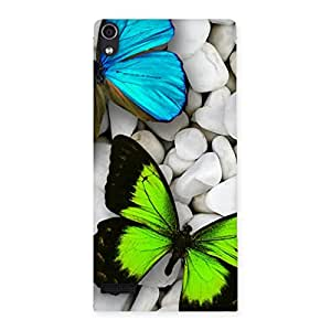 Enticing Premier Butterflies Multicolor Back Case Cover for Ascend P6