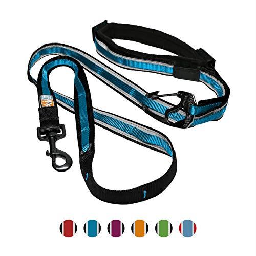 Kurgo Freihand Hunde-Leine - Flexi Leine Gürtel mit verstellbarem Bauchgurt für Rennen - Reflektierende Joggingleine Hunde - Quantum Stil - Blau
