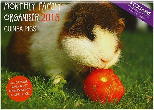 Magnet & Steel Guinea Pig A42015Planer (Kalender Monatlichen Planer)