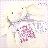 Personalised Bunny Rabbit, Embroidered Stitched in quality teddy bear, new baby girl/christening gift - keepsake, birth stats