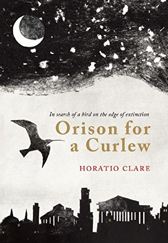 Orison for a Curlew
