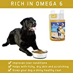 ACTIF PETS Flaxseed Oil for Dogs-Rich in Omega 3, 6 & 9 for Dry, Itchy Skin/Coat. A Natural Dog Supplement for Stiff… 10