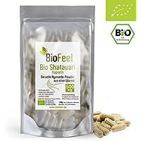 BioFeel - BIO Shatavari Kapseln, 120 Stk, 500mg - Indischer Spargel - Ginseng für Frauen