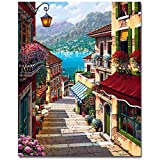 Bingcute Paint By Numbers For Adults and Kids DIY Oil Painting Gift Kits With Wooden Frame Pre-Printed Canvas Art Home Decora