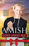 Amish Love Saves All (Peace Valley Amish Series Book 3)
