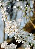 Natur am Meer - Wälder, Gärten und Blumen am Rande der Ostsee (Wandkalender 2018 DIN A3 hoch): Die Mecklenburger Ostseeküste und ihr Umland werden ... ... [Kalender] [Apr 01, 2017] Schneekloth, Heidi