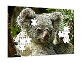 Klebefieber Puzzle Koalafamilie B x H: 28cm x 20cm
