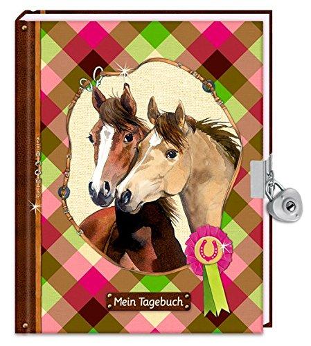 Preisvergleich Produktbild Tagebuch - Mein Tagebuch