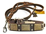 Dean & Tyler das Antik Leder Halsband mit Passenden Braidy Haarschmuck Strauß Leine für Haustiere, 36bis 102cm, braun