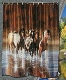 Textil Duschvorhang Rush Hours 180x180 cm Raumteiler Vorhang Pferde