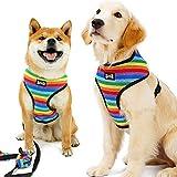 BONNIO Haustier Hund Breathable Vest Harness Leine Einstellbare Regenbogen Farbe Kragen Strap Zugseil