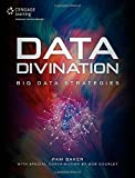Data Divination: Big Data Strategies by Pam Baker (2014-08-21)