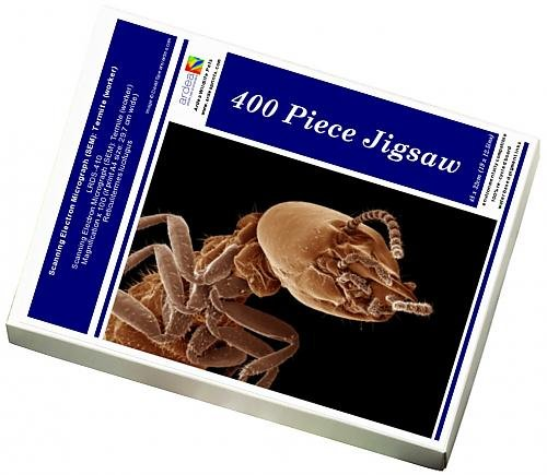 photo-jigsaw-puzzle-of-scanning-electron-micrograph-sem-termite-worker