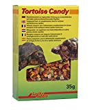 Lucky Reptile Tortoise Candy 35 g, 1er Pack (1 x 35 g)