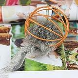 sevenmye Katze spielen Spielzeug Falsche Maus in Rattenkäfig Ball Spielzeug für Haustier Katze Kätzchen - 4