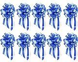 WENTS Ruban de Voiture de Mariage 10PCS Papillon Cadeau Papillon Pull Décoration de Fête de Mariage de Fleurs Fleur (Bleu/Ciel Bleu)