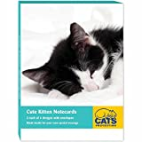 Cats Protection Stationery - Notecard Pack (A6) Cute Kittens