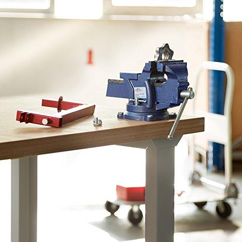 TecTake Schraubstock Amboss 360° drehbar mit Drehteller für Werkbank – diverse Größen – (Spannweite 125 mm | Nr. 401124) - 2