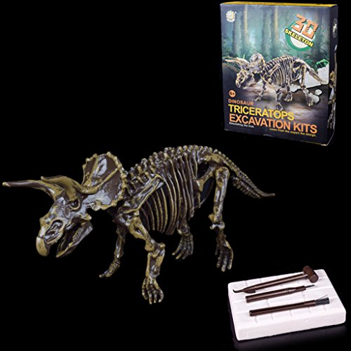 Senoow Entdecken Sie Dinosaurier Kit Skeleton Knochen Modell Ausgrabung Archäologie Spielzeug ()