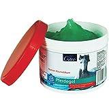 JS Care Pferdegel | 500 ml Tiegel | Muskel- und Gelenk Creme | Kühlend