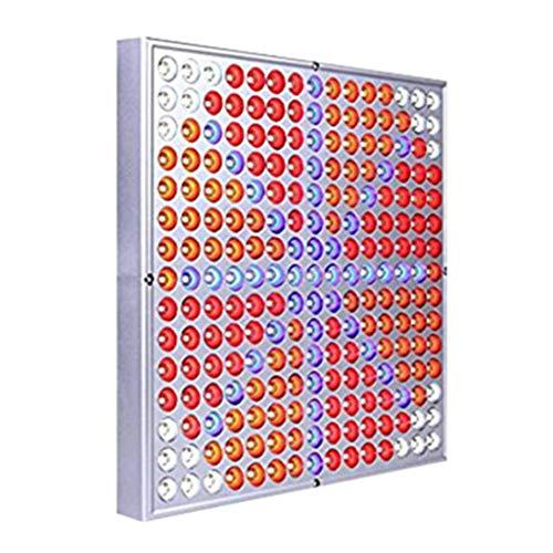 Quadratisches LED-Pflanzenlicht, Das Ganze Spektrum Panel Rot Weiß Blau Fülle Licht Pflanzlampe Lampe for Pflanzenwachstum 50W (Size : US standard -50W)