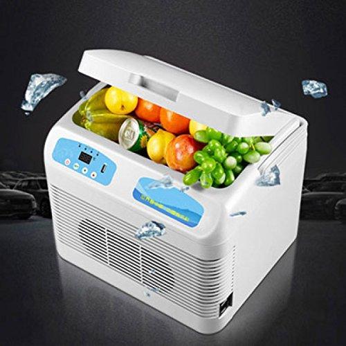 Auto Kühlschrank 12L Kühlschränke Mini Kühlschränke Auto Kühlschrank Auto Dual-Use Kleine Box Auto-Single-Door-Dual-Use,12L (Single-door Box)