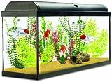 Interpet Aquaverse Glass Aquarium Fish Tank Premium Kit - 110 L