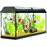 Interpet Aquaverse Glass Aquarium Fish Tank Premium Kit - 110 Litre