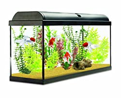 Interpet Aquaverse Glass Aquarium Fish Tank Premium Kit, 110 Litre