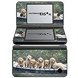 Hunde 10038, Hündchen, Design folie Sticker Skin Aufkleber Schutzfolie mit Farbenfrohe Design für Nintendo DSi XL Designfolie