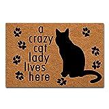MsMr Felpudo Entrada Interior decoración de Suelo (un Gato Loco Lady Vive aquí, hogar y Oficina Felpudo 23.6por 15,7Pulgadas