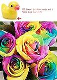 Kofun 200 Stück Bunte Regenbogen Rose Blumensamen Blütenblatt Pflanzen Hausgarten