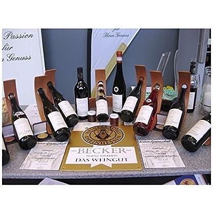 Weingut-Marco-Becker-Rheinhessen-Sptburgunder-Blanc-de-Noir-2014-trocken-9-x-075l-VERSANDKOSTENFREI