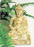 My Home Buddha Statue