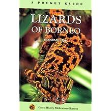 Lizards of Borneo: A Pocket Guide by Indraneil Das (2004-12-31)