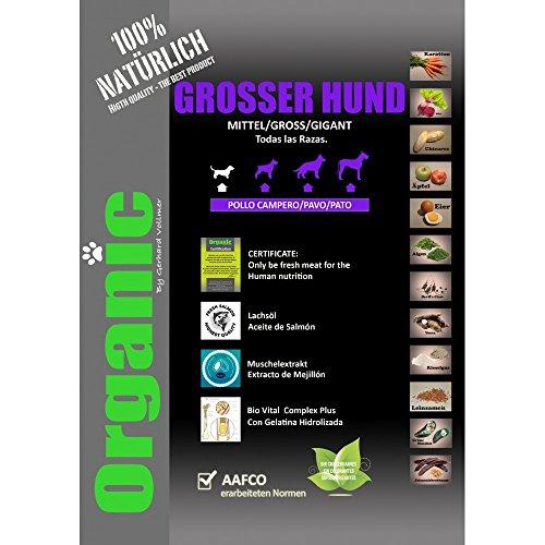 Alimento para perros Organic Grosser Hund 16kgs con Carne, Verduras y Aceite de Salmón!