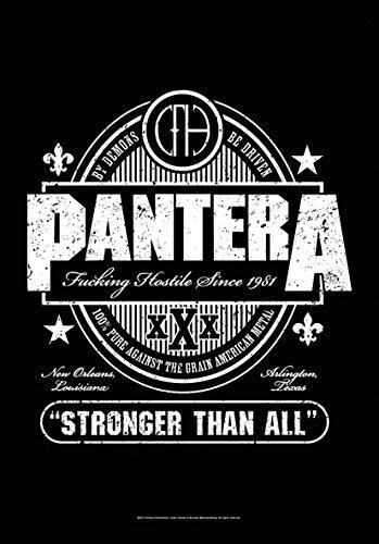 PANTERA FLAGGE / FAHNE / POSTERFLAGGE STRONGER THAN ALL (Flagge Pantera)