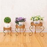 LJ Scaffale da balcone Indoor e Outdoor Bonsai in ferro da stiro in stile europeo ( Colore : Oro )