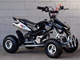 Mini Quad ATV Kinderquad 49 cc Powerquad 49ccm 2010 NEU