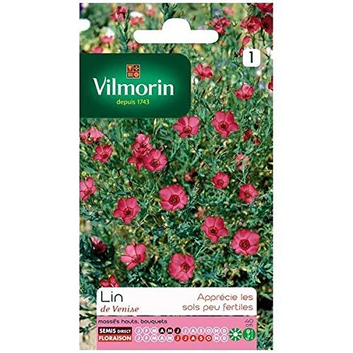 Vilmorin - Sachet graines Lin de venise rouge