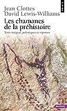 Les Chamanes de la préhistoire. Transe et magie dans les grottes ornées. Texte intégral, polémique e