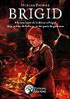 BRIGID - A la rencontre de la déesse celtique de la poésie, de la forge: Et des puits de guérison