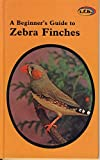A Beginner's Guide to Zebra Finches