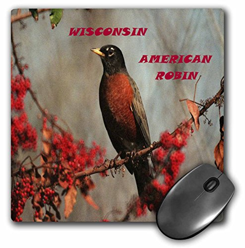 Florene State Birds - State Bird Of Wisconsin American Robin - MousePad (mp_50943_1)
