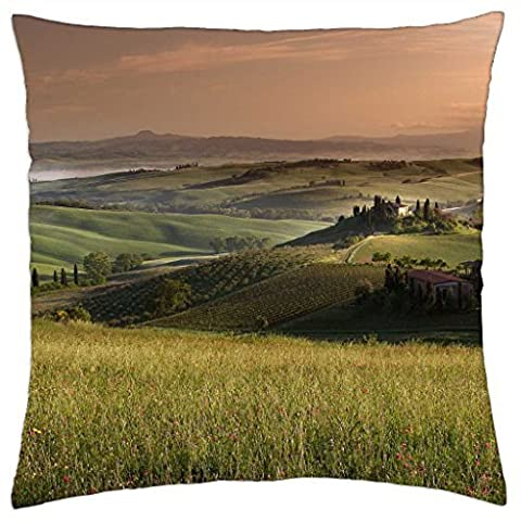 magnificent rural tuscan landscape - Throw Pillow Cover Case (16