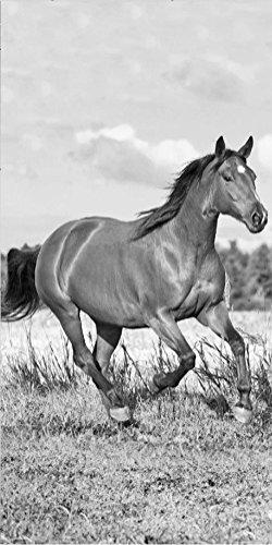 Horse Riding Pferde Strandtuch 70 x 140cm Schwarz-Weiß
